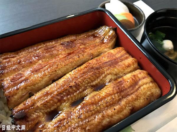 鱼苗5年价格翻番推高鳗鱼饭零售价 日本只能从中国高价采购