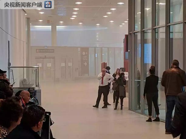 加拿大多伦多皮尔逊机场发生起火事故 现场冒出大量烟雾 一人送医