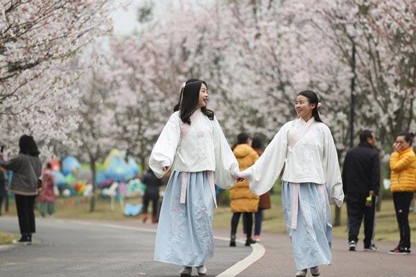 四川眉山:樱花盛开迎客来
