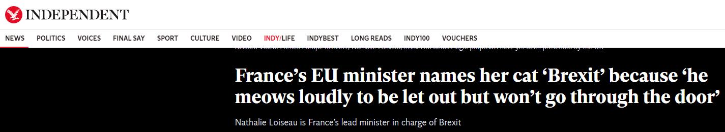 """法国一部长给猫取名""""脱欧"""",因其总是犹豫不定"""
