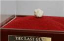 无奇不有!弗格森最后一战所嚼口香糖被拍39万镑