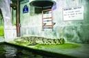 到法国动物园看网红鳄鱼小姐