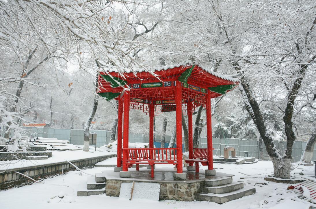 吉林春分迎大雪 城市犹如冰雪童话世界