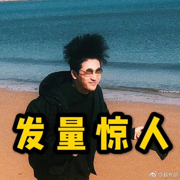 """苏有朋晒海边漫步照 头发""""炸开""""秒变表情包"""