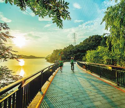 逢树绕路,遇水搭桥,遍布城乡:杭州绿道串起幸福时光