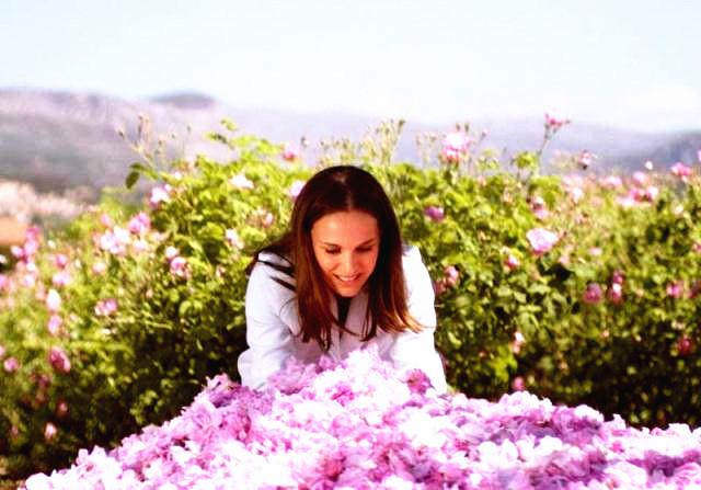 图集 | 格拉斯:世界香水之都 花宫娜诞生摇篮