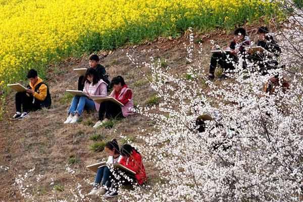 豫西山区:春日寻芳 多彩山乡