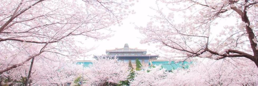 """""""和服赏樱花""""风波:对武汉大学要多些理解"""