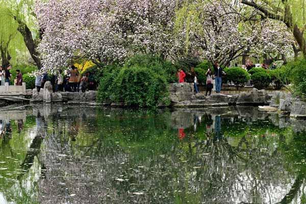 山东济南:乐享好春光