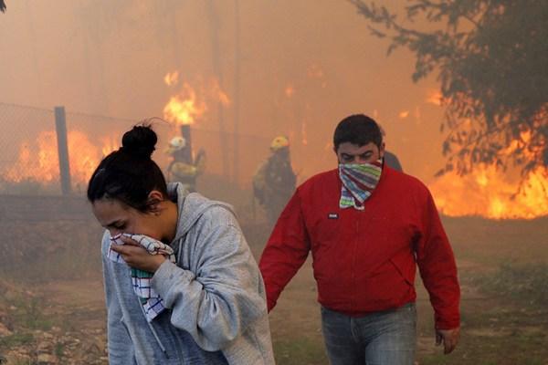 西班牙西北山区野火肆虐 已烧毁750公顷土地