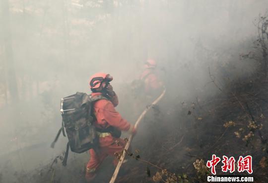四川米易攀莲镇境内发生森林火灾 近300人奋战火场扑救