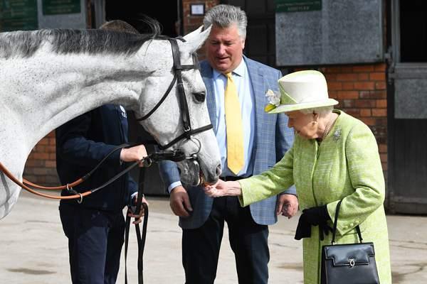 英女王伊丽莎白二世造访马场 亲手给赛马喂胡萝卜