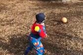 未来球星!四岁男童9米外投篮精准命中