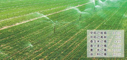 全国已播农作物1.5亿亩 占春播意向面积11.3%