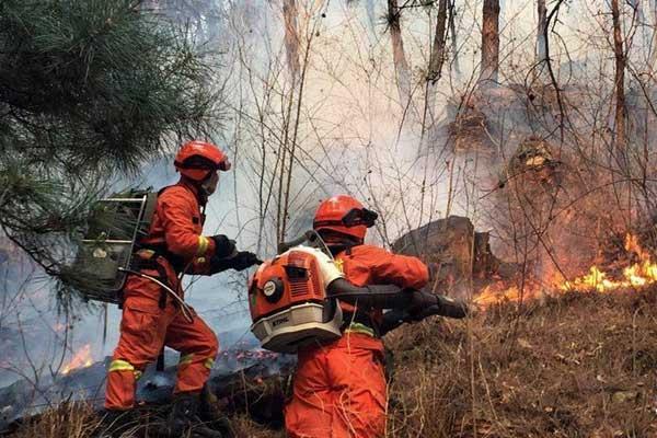 北京密云发生森林火灾 目前明火已被扑灭