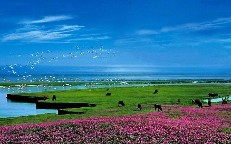 江西对鄱阳湖内捕捞许可证进行全面摸底核查
