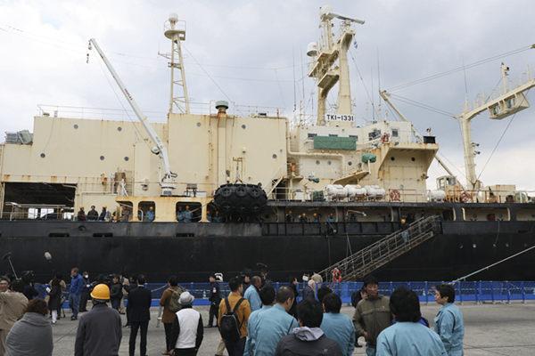 """日本30年南极""""科研捕鲸""""结束 将重启商业捕鲸"""