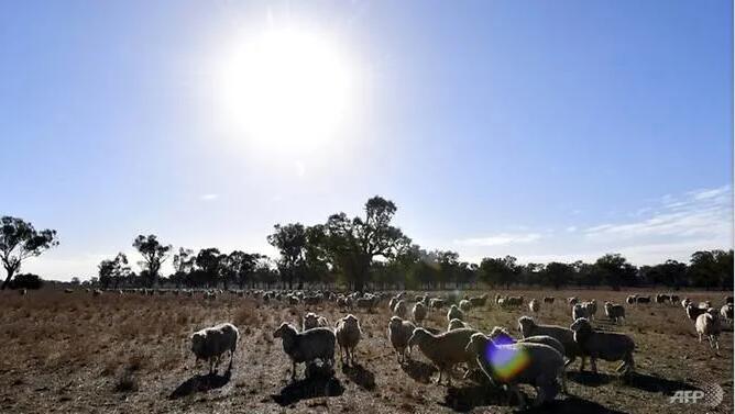 澳大利亚气象局:澳洲经历了有史以来最热的三月