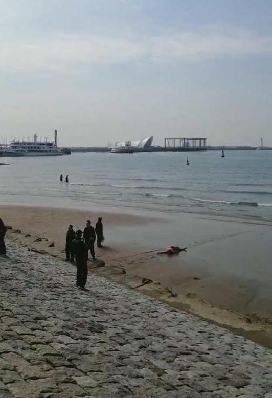 男子彩虹桥附近落海 众人齐救援 落水者仍不治身亡