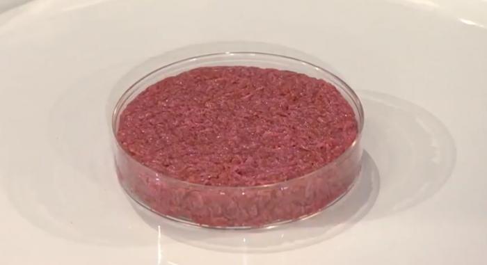 """实验室里长出的干细胞培育""""人造肉"""" 你敢吃吗?"""