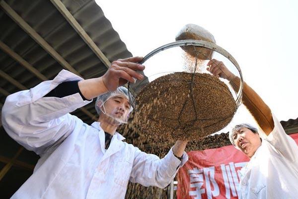 河北晋州:传统酥糖手工制作技艺