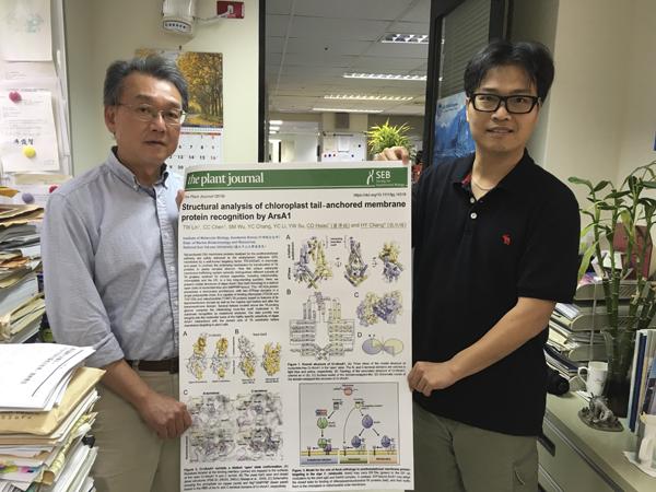 创全球先例!台中山大学发现绿藻能缓解温室效应