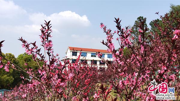 湖南邵阳:打造生态旅游产业带 凸显旅游亮点