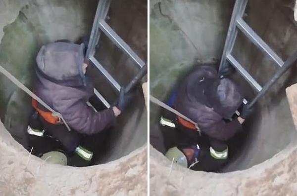 乌克兰救援犬听呼吸声找到受困下水道三日老人