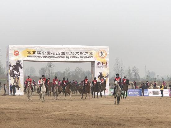 第五届中国砀山国际马术耐力赛在黄河故道举行