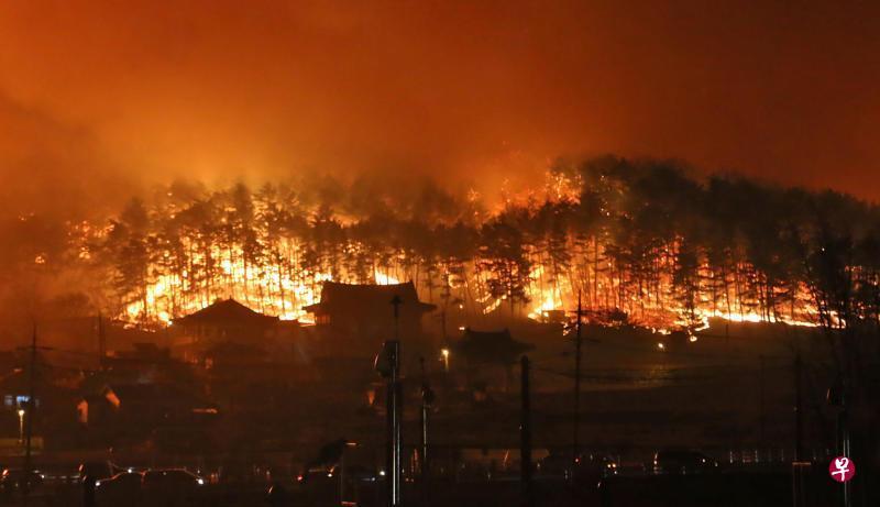 韩政府宣布该国山火为国家灾难 确认至少1死11伤