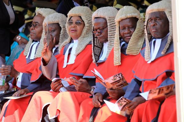 津巴布韦政府从英国进口64顶法官假发 花费超100万引发争议