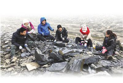 科技视点·寒武纪化石宝库:清江生物群
