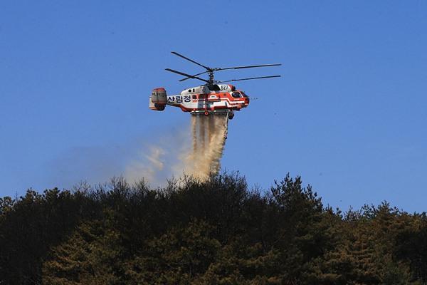 韩国江原森林火灾现场发生复燃 消防部门出动直升机灭火