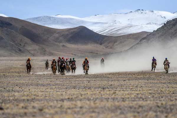西藏羌塘高原迎赛马