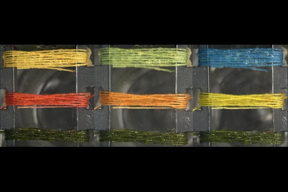 """美国科学家发明新丝线:可""""闻毒变色"""""""