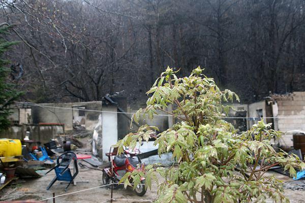 韩国江原道山火灾区迎来降雨