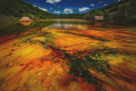 罗马尼亚鬼村被有毒湖水淹没 色彩斑斓阴郁迷幻