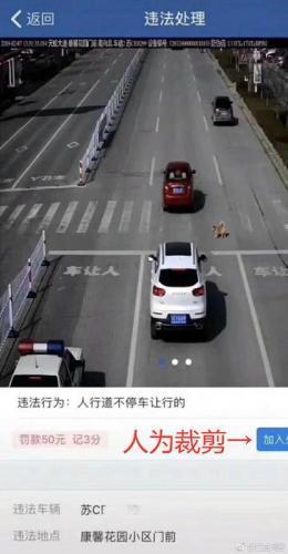 斑马线不停车让狗被罚款扣分?江苏网警辟谣