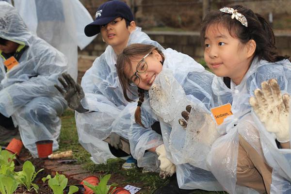 美驻韩大使官邸菜园投入使用 附近小学生可去种菜