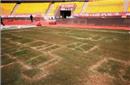 足协就草坪问题致中超比赛延期致歉 将展开专项督查