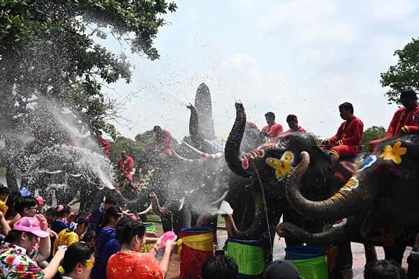 泰国庆祝宋干节 狂欢者和大象互泼水