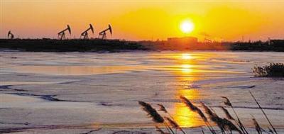 印度研发新型催化剂变石油废料为有用材料