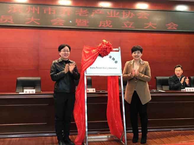 滨州市养老产业协会成立