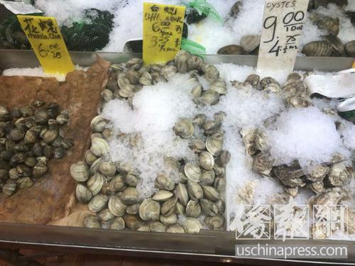 中国侨网纽约华埠海鲜市场出售的新鲜贝壳类海鲜。(美国《侨报》/尹英姿 摄)