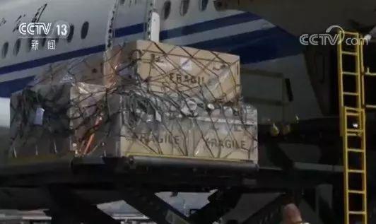 欢迎回家!意大利返还的796件套中国流失文物回归祖国