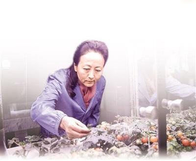 """""""月宫一号""""总设计师刘红:把科幻做成科学"""