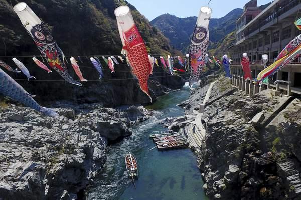日本山谷悬挂五彩鲤鱼旗 迎接男孩节