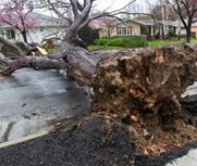 美国加州遭遇强暴风