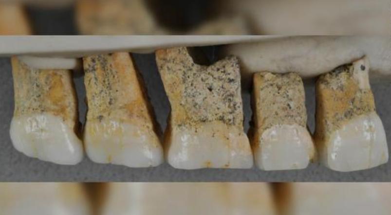 菲律宾发现新人类物种:距今超5万年,疑似人类近亲