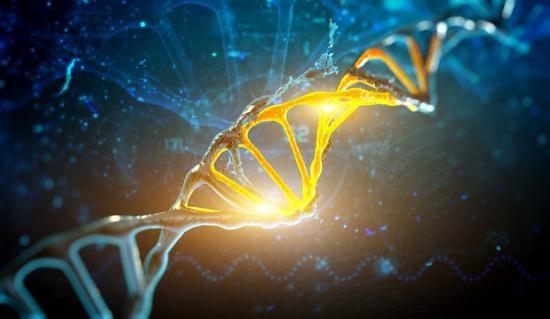 穷不过三代?研究发现贫穷会写入基因传给下一代